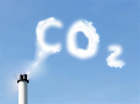 Press Release: A climate neutral Europe by 2050